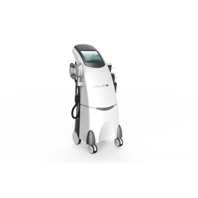 D-Finitive EVO Zayıflatan Robot